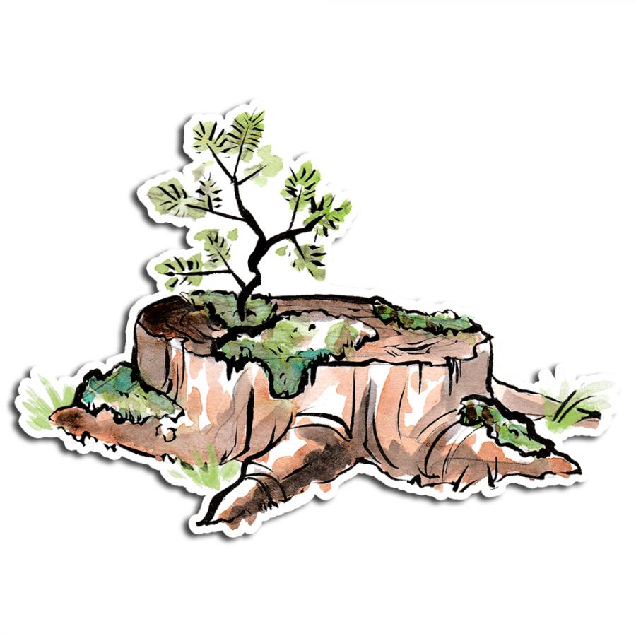 stumpy_web-store