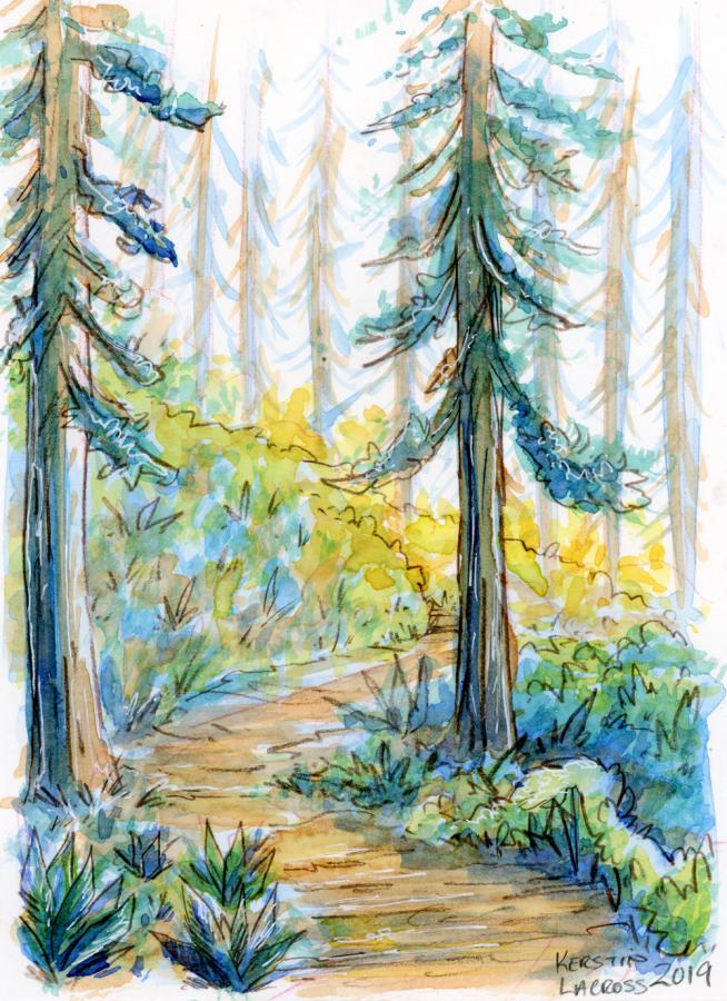 sunny-trail_WEB
