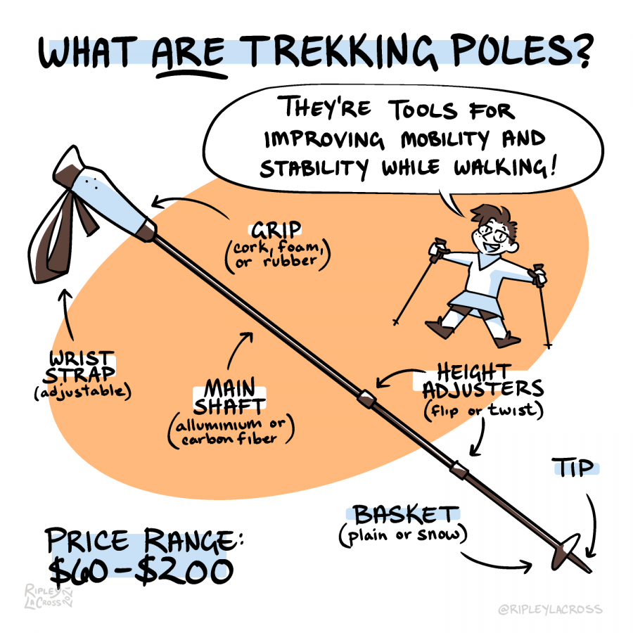how-to-use-trekking-poles_p2