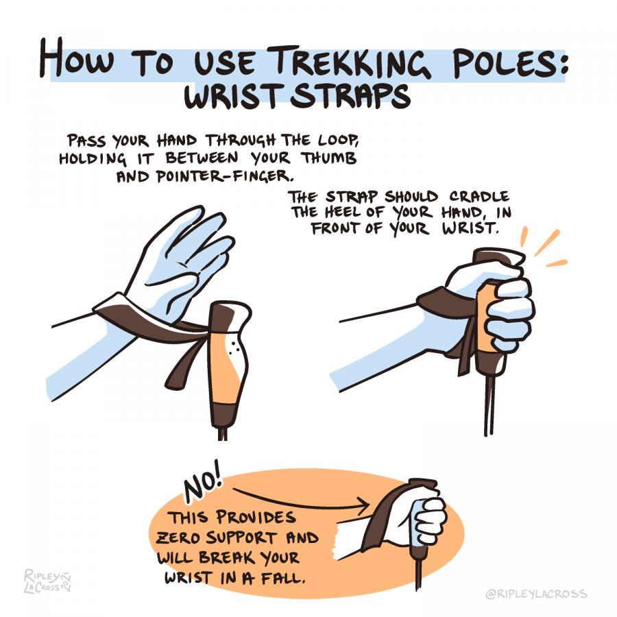 how-to-use-trekking-poles_p4